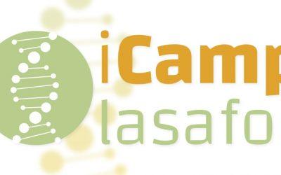 iCamp la Safor 2018