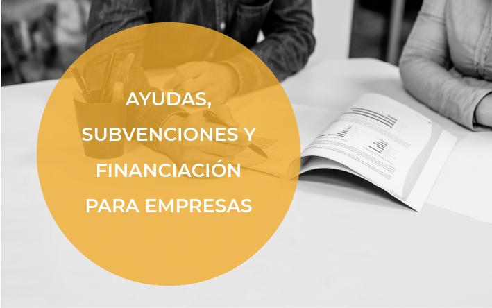 Ayudas y subvenciones para Empresas y Profesionales