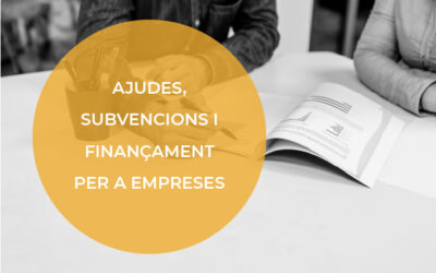Ajudes i subvencions per a Empreses i professionals