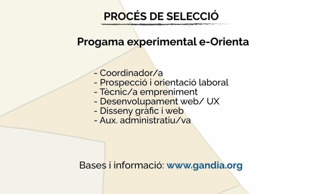 L'Acord Territorial per a l'Ocupació i el Desenvolupament de la comarca de la Safor desenvoluparà un nou programa experimental en el període 2021-2022
